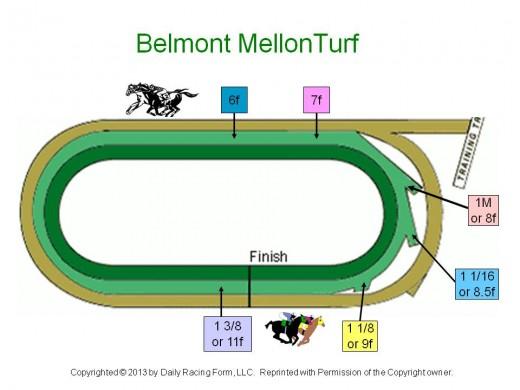 Belmont Mellon Turf