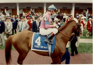 1991 Kentucky Derby Winner - Strike The Gold