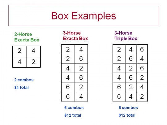 Boxing Bets Explained - image 11