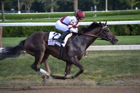 Royal Delta Spa3