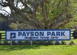 Payson Park Sign