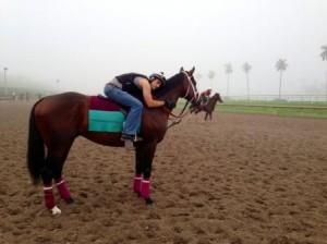 T.C. Stevens Hugging Horse
